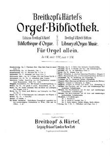 Sonata for Organ in G Minor, Op.29: Sonata for Organ in G Minor by Edgar Pierre Joseph Tinel