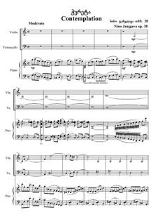 Contemplation, Op.38: Contemplation by Nino Janjgava