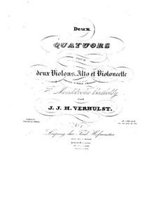 String Quartet No.1 in D Minor, Op.6: quarteto de cordas no.1 em D menor by Johannes Verhulst