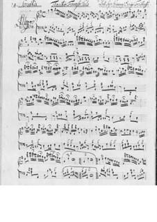 Sonata for Flute and Basso Continuo: soneto para flauta e fagote continuo by Johan Henrik Freithoff