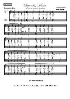 Alte Marienlieder Nr.1, Segne du, Maria, Op.231: Alte Marienlieder Nr.1, Segne du, Maria by folklore