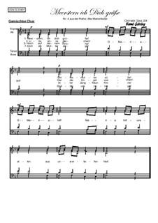 Alte Marienlieder Nr.4, Meerstern ich Dich grüße, Op.234: Alte Marienlieder Nr.4, Meerstern ich Dich grüße by folklore