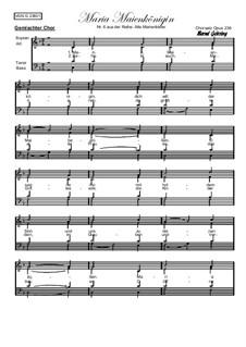 Alte Marienlieder Nr.6, Maria Maienkönigin, Op.236: Alte Marienlieder Nr.6, Maria Maienkönigin by folklore