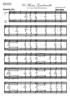 Alte Marienlieder Nr.7, O Maria, Gnadenvolle, Op.237: Alte Marienlieder Nr.7, O Maria, Gnadenvolle by folklore
