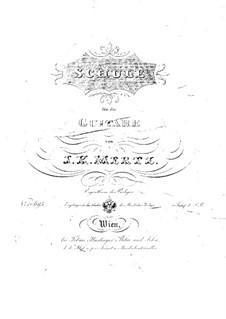 Method for Guitar: Method for Guitar by Johann Kaspar Mertz