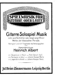 Elegy and Fantasia: Elegy and Fantasia by Johann Kaspar Mertz
