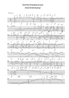 Pieces for Lute: peças de luto by Johann Kapsberger