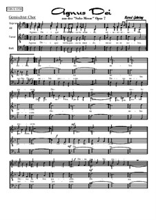 Solomesse, Op.7: Nummer 6: Agnus Dei by Bernd Gehring