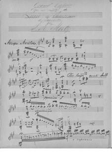 Grand Caprice: Grand Caprice by Johann Kaspar Mertz