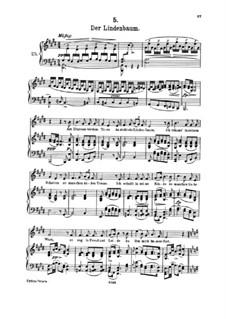 No.5 Der Lindenbaum (The Linden Tree): Partitura piano-vocal by Franz Schubert