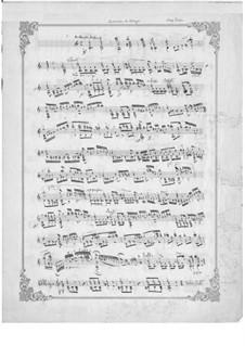 Andante and Allegro: para guitarra (manuscrito) by Napoléon Coste