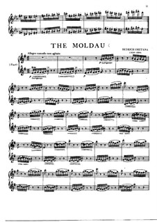 Vltava, T.111: para duas flautas by Bedřich Smetana