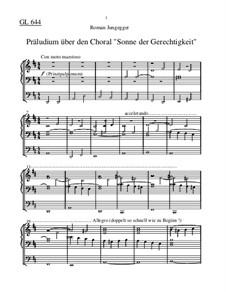 Sonne der Gerechtigkeit (Präludium): Sonne der Gerechtigkeit (Präludium) by Roman Jungegger