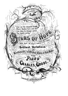 Brilliant Variations on 'Clara or Last Waltz' by Beethoven, Op.508: Brilliant Variations on 'Clara or Last Waltz' by Beethoven by Charles Grobe