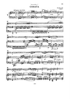 Sonata for Violin and Piano No.7, Op.30 No.2: movimento I by Ludwig van Beethoven