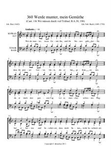Werde munter, mein Gemüthe: Werde munter, mein Gemüthe by Johann Sebastian Bach