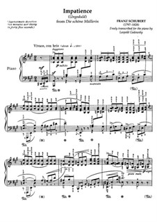 No.7 Ungeduld (Impatience): Partitura piano by Franz Schubert