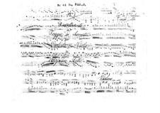 Three Divertimentos for Violin and Viola, BI 40, 41, 49: Three Divertimentos for Violin and Viola by Alessandro Rolla
