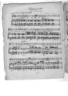 No.12 Frühlingsnacht (Spring Night): Piano-vocal score (Manuscript) by Robert Schumann
