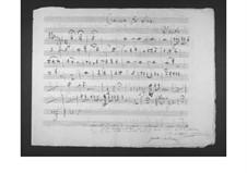 Concerto for Viola and Orchestra: parte flauta by Gaetano Donizetti