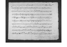 Concerto for Viola and Orchestra: parte violas by Gaetano Donizetti