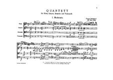 Quartet for Flute, Guitar, Viola and Cello, D.96: Quartet for Flute, Guitar, Viola and Cello by Franz Schubert