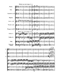 Symphony No.4, Op.60: Movimento IV by Ludwig van Beethoven