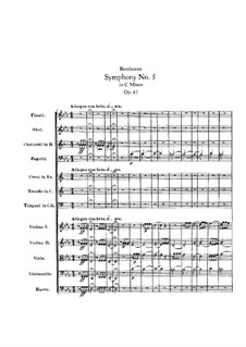 Movement I: partitura completa by Ludwig van Beethoven