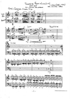 Toccata and Fugue in D Minor, BWV 565: For clarinet and bassoon by Johann Sebastian Bach