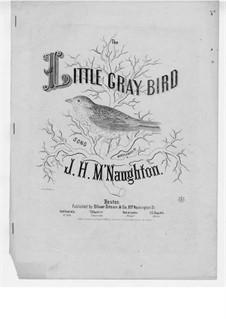 The Little Gray Bird: The Little Gray Bird by John Hugh McNaughton