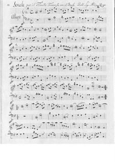 Sonata for Flute and Basso Continuo: soneto para flauta e fagote continuo by Filippo Ruge