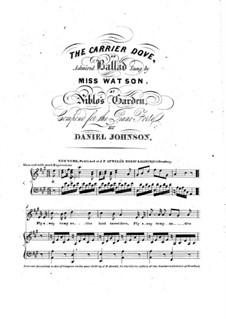 The Carrier Dove: Para vocais e piano by Daniel Johnson