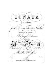 Sonata for Viola and Piano: sonata para viola e piano by Marco Ressi