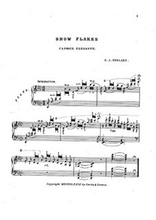 Snow Flakes: In G Flat Major by Robert A. Newland