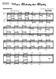 Mein Schatz der Spatz, Op.357: Mein Schatz der Spatz by Bernd Gehring