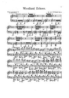 Woodland Echoes, Op.34: versão para piano by Addison Wyman