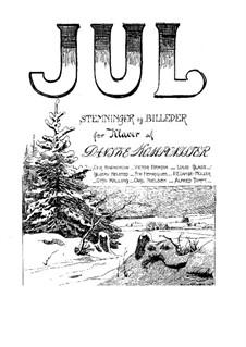 Julesne: Julesne by Christian Barnekow