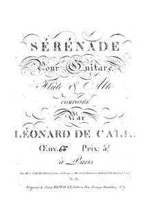 Serenade for Guitar, Flute and Viola, Op.66: Serenata para guitarra, flauta e viola by Leonhard von Call