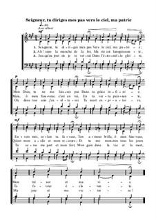 Seigneur, tu diriges mes pas vers le ciel, ma patrie: Seigneur, tu diriges mes pas vers le ciel, ma patrie by Johann Sebastian Bach