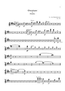 Overture: parte flauta by Ludwig van Beethoven
