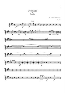 Overture: parte oboes by Ludwig van Beethoven