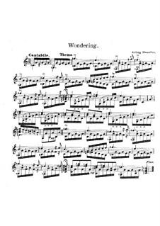 Wondering: Wondering by Arling Shaeffer
