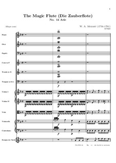 Hell's Vengeance Boils in My Heart: Partitura completa by Wolfgang Amadeus Mozart