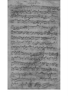 Quartet for Strings and Basso Continuo in E Minor, TWV 43:e5: Quartet for Strings and Basso Continuo in E Minor by Georg Philipp Telemann