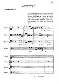 Buccinate in Neomenia tuba: Buccinate in Neomenia tuba by Giovanni Croce