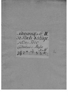 Trio Sonata for Two Violins and Basso Continuo, TWV 42:d11: Trio Sonata para dois violinos e baixo contínuo by Georg Philipp Telemann