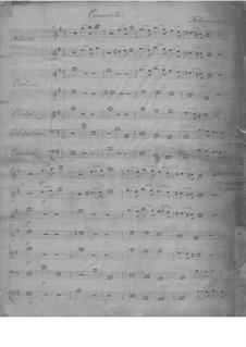 Concerto in E Minor, TWV 52:e2: Concerto in E Minor by Georg Philipp Telemann