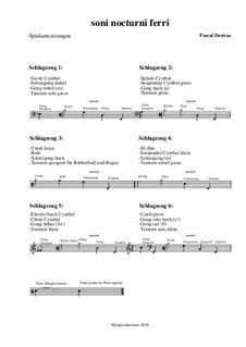 Soni nocturni ferri – Spielanweisungen: Soni nocturni ferri – Spielanweisungen by Pascal Destraz
