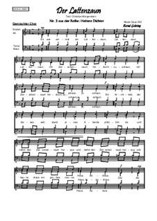 Heitere Dichter Nr.3: Der Lattenzaun, Op.382: Heitere Dichter Nr.3: Der Lattenzaun by Bernd Gehring