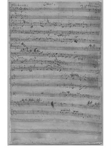 Concerto for Two Flutes and Orchestra in B Minor, TWV 53:h1: Concerto for Two Flutes and Orchestra in B Minor by Georg Philipp Telemann